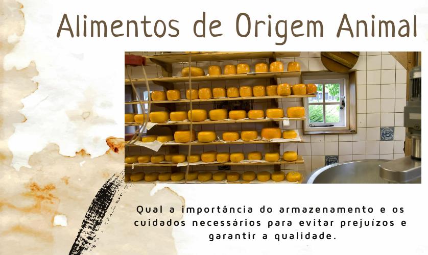Cuidados com o armazenamento de alimentos de origem animal que o profissional da indústria precisa saber