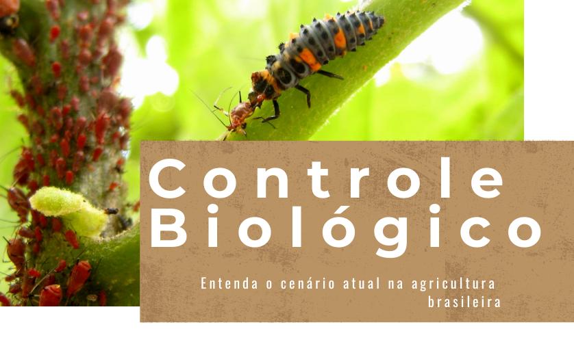 Controle Biológico: o que é, para que serve e quais os tipos