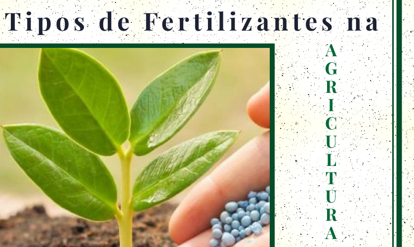 Fertilizantes na Agricultura: conheça todos os tipos