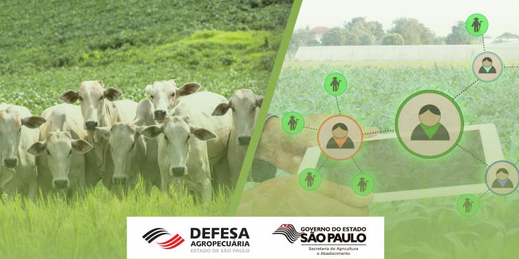Concurso Autorizado – Secretaria de Agricultura e Abastecimento de São Paulo (SAA SP)