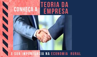 Conheça a teoria da empresa e sua importância na Economia Rural
