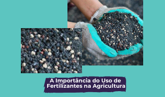 A Importância do Uso de Fertilizantes na Agricultura