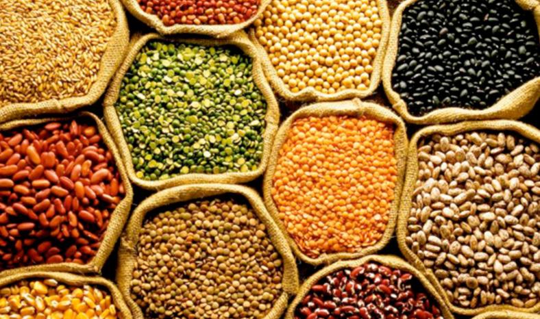 Um Olhar Agronômico Sobre Segurança Alimentar, Nutrição e Saúde