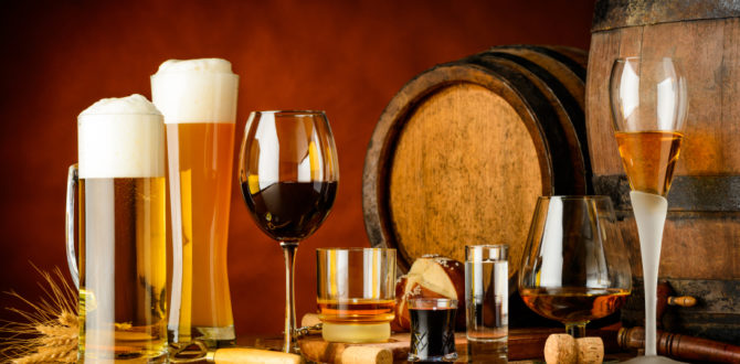 Tecnologia de Bebidas Fermentadas: processo fermentativo e legislação