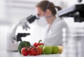Desenvolvimento de novos produtos alimentícios