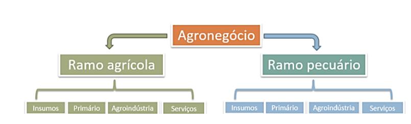 Setor agropecuário - divisão