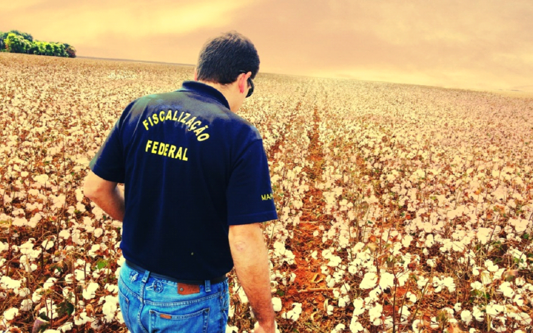 20 anos da carreira de Auditor Fiscal Federal Agropecuário (AFFA): como e onde atua esse profissional