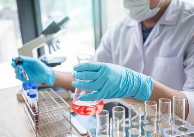 Melhoramento genético: o que é e como ele é usado na agricultura e pecuária