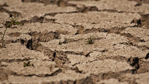 Degradação do solo: causas, consequências e como evitar